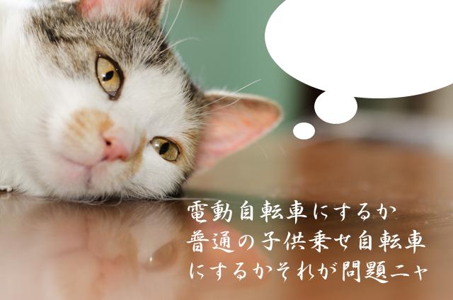ヤマハPASナチュラXLを購入した感想!育児が随分楽になったよ!!【レビュー】