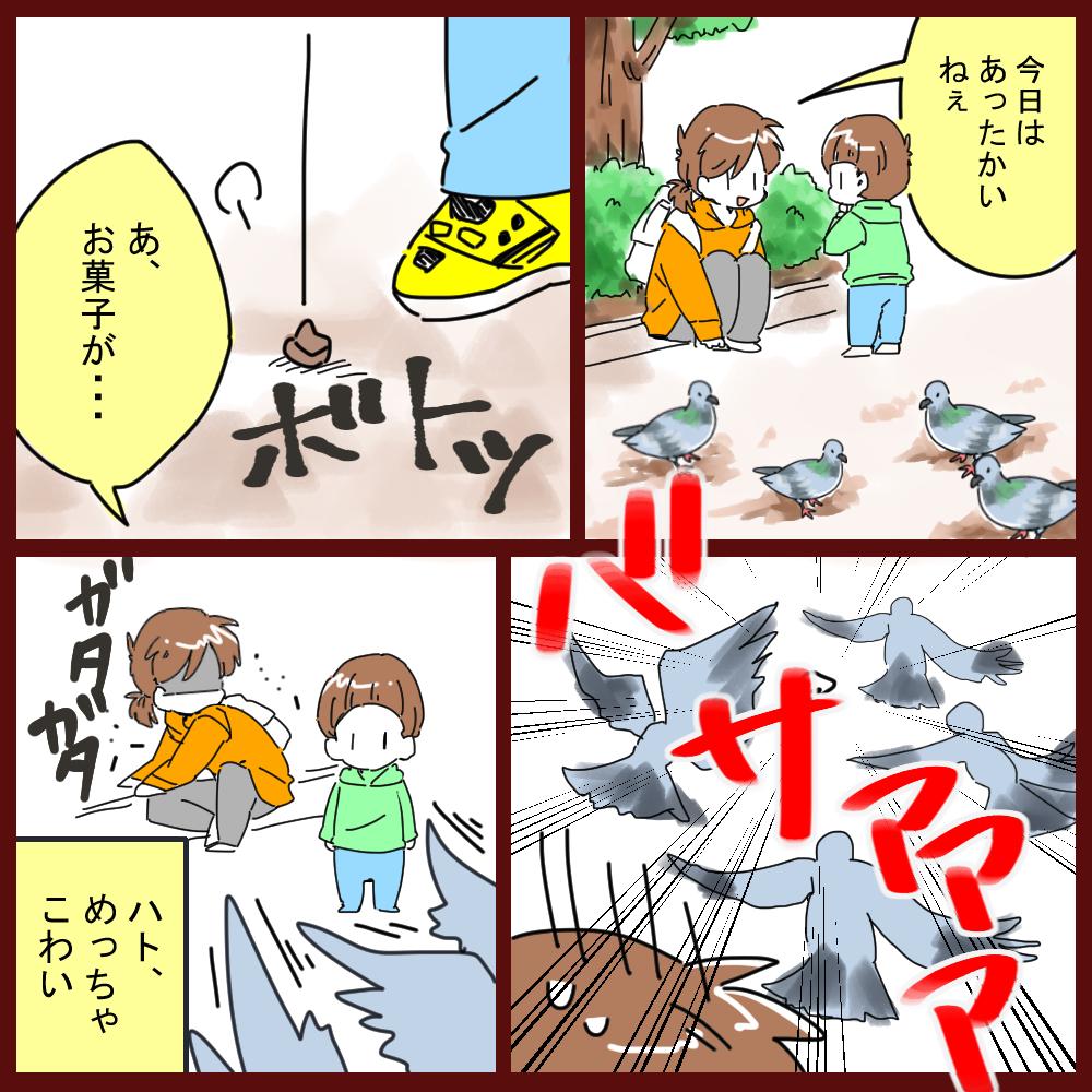 鳩が大好きなともちん。クリプトコッカス症に気をつけて!